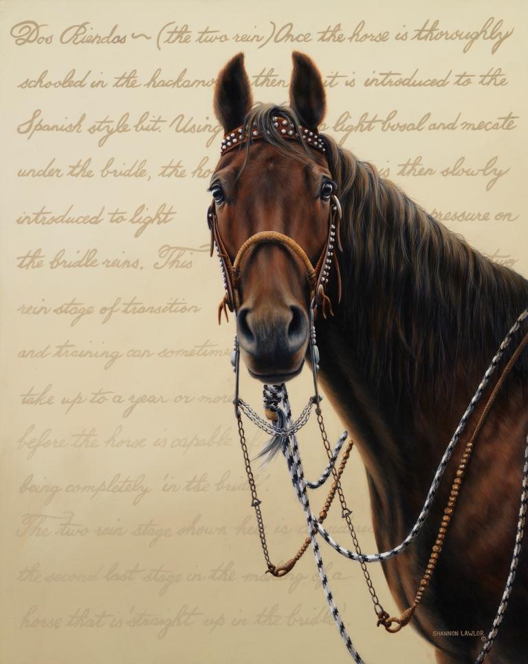 equestrian western art print by Calgary Artist Shannon Lawlor