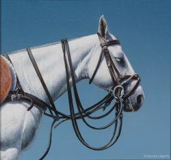 polo pony equestrian art print by Calgary Artist Shannon Lawlor