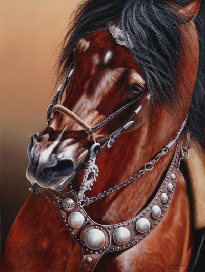California Vaquero Bridle Horse equestrian art original painting by Calgary Artist Shannon Lawlor