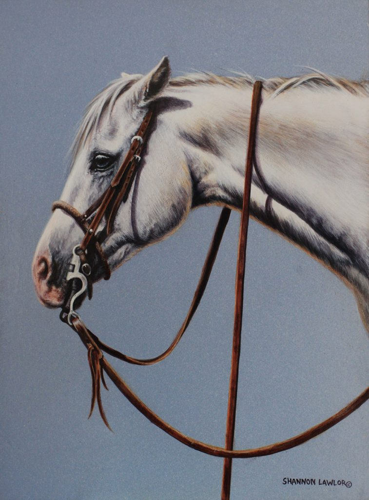 Grey Texas ranch horse art original painting by Calgary Artist Shannon Lawlor