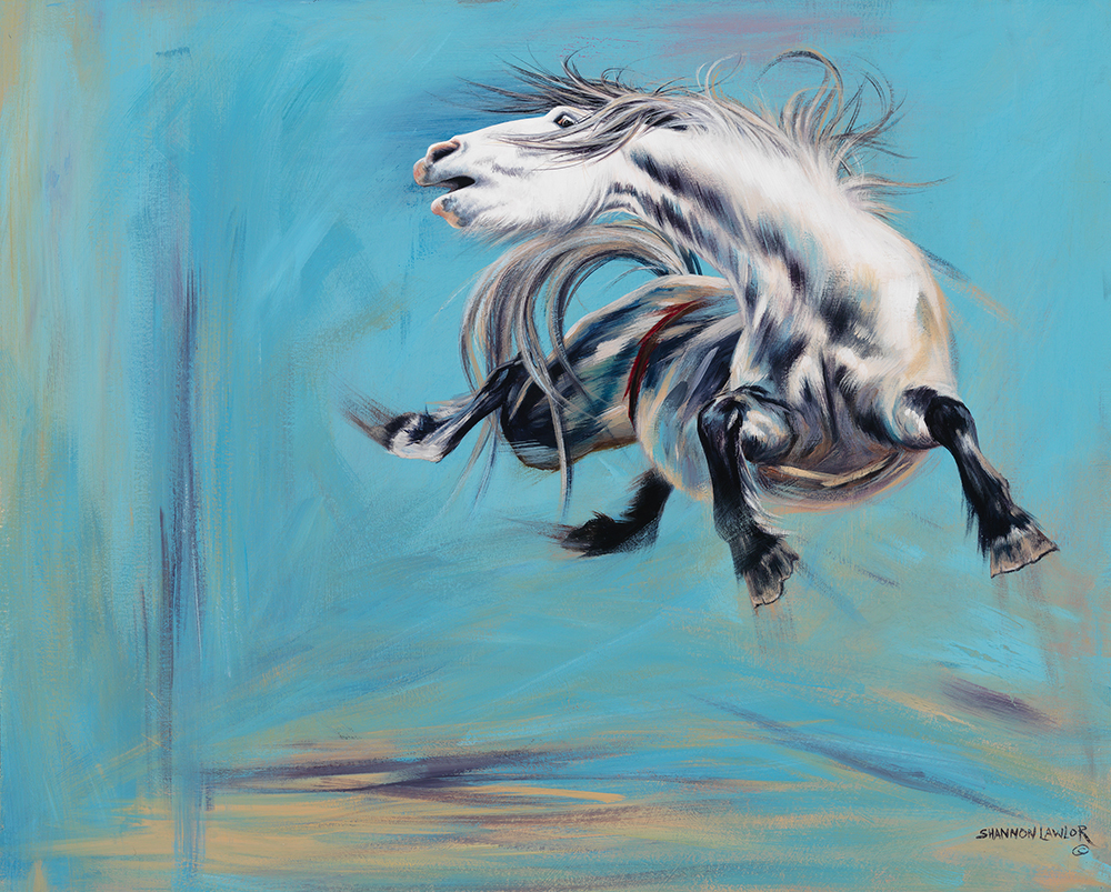 Grey NFR bucking horse art original painting by Calgary Artist Shannon Lawlor