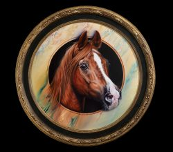 Chestnut Arabian Stallion art original painting by Calgary Artist Shannon Lawlor