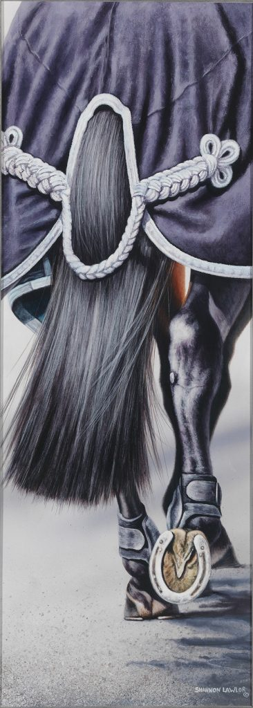 show horse equestrian lifestyle art original painting by Calgary Artist Shannon Lawlor