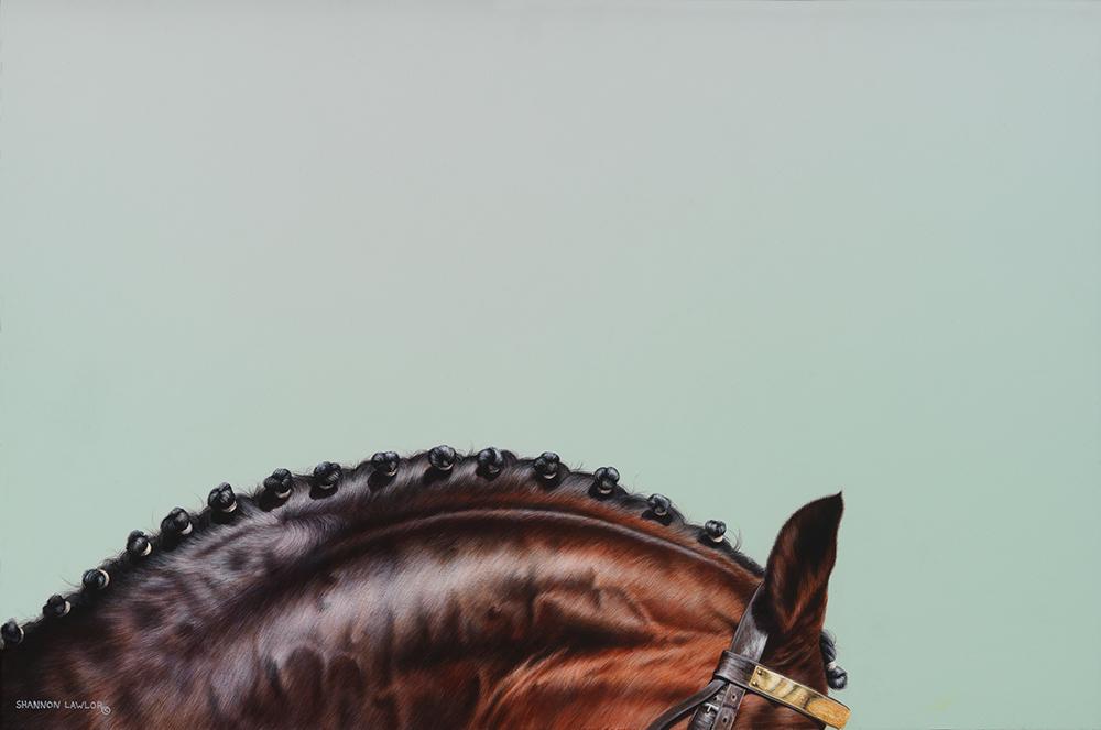 Dressage Show horse equine art original painting by Calgary Artist Shannon Lawlor