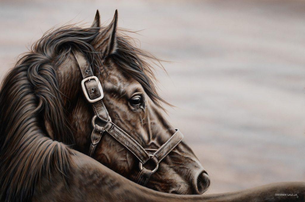 Black horse monochromatic Ducks Unlimited Canada art original painting by Calgary artist Shannon Lawlor