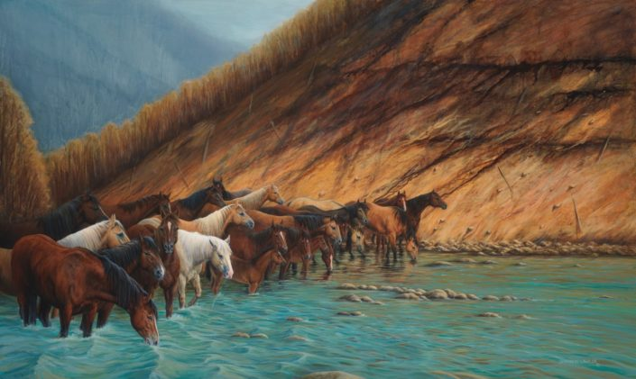horses in the river equestrian art print by Calgary Artist Shannon Lawlor