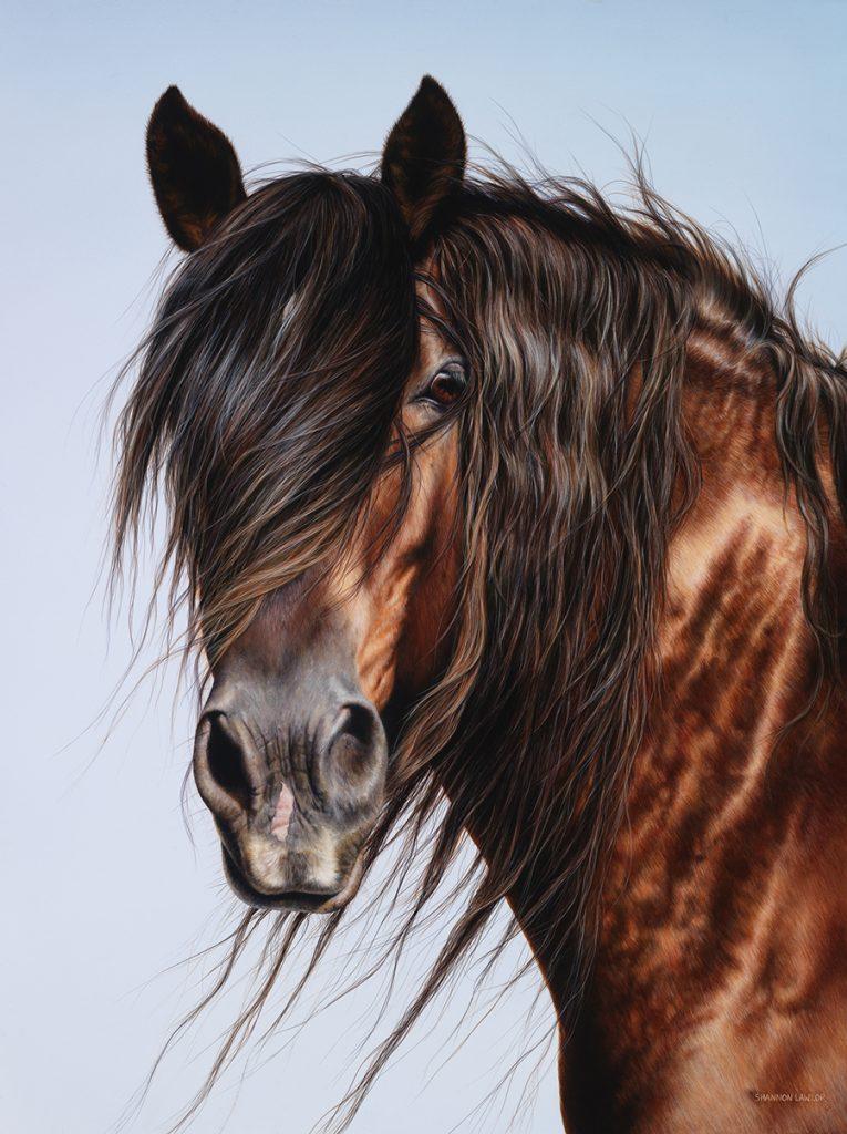 equestrian statement art print by Calgary artist Shannon Lawlor