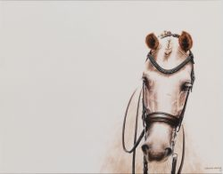 equestrian decor statement art print by Calgary artist Shannon Lawlor