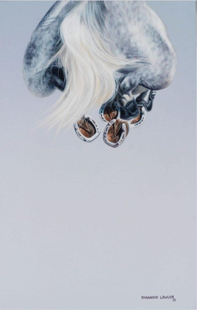 equestrian decor statement art print by Calgary artist Shannon Lawlor