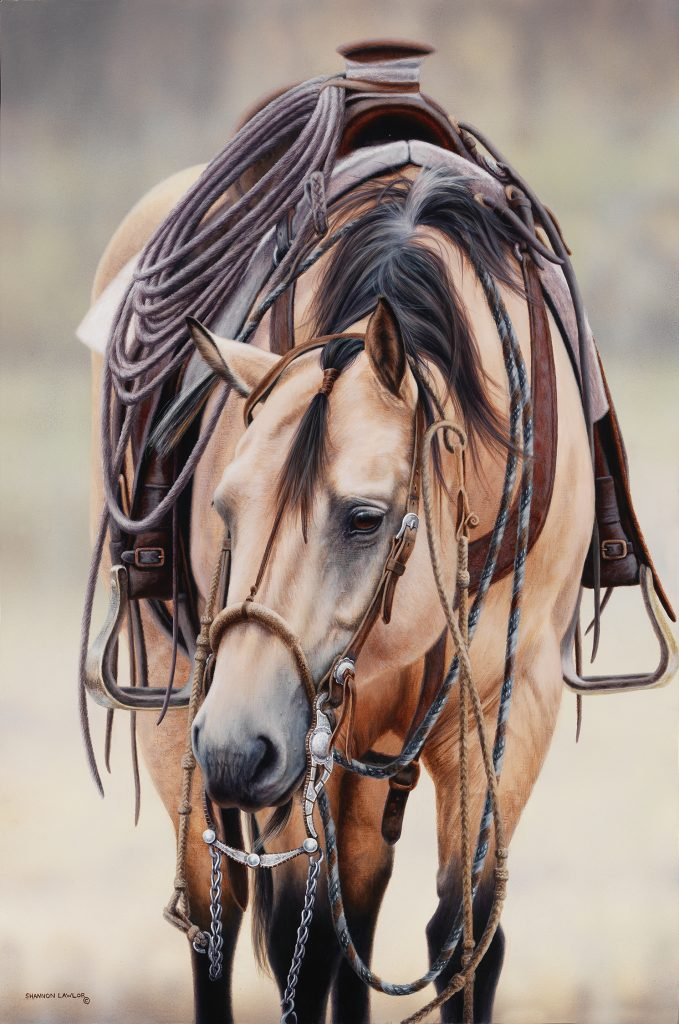 Buckskin bridle horse Bar U Ranch Rodeo Vaquero equine art original painting by Calgary artist Shannon Lawlor