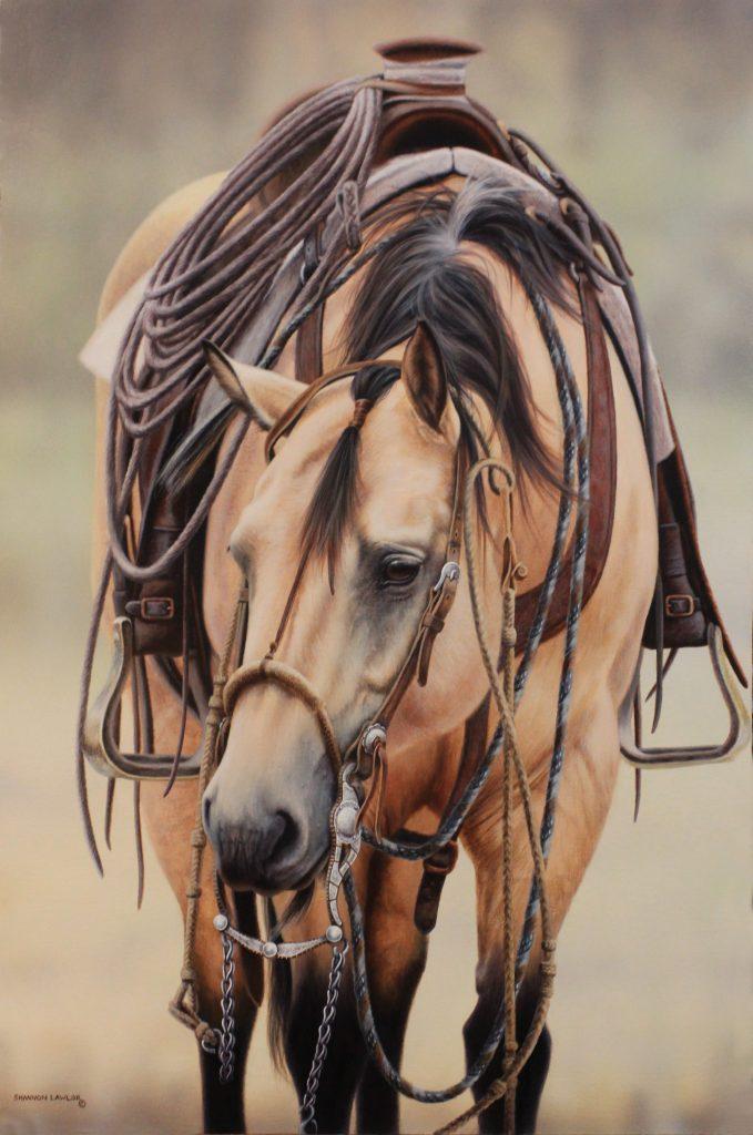 Buckskin bridle horse Bar U Ranch Rodeo Vaquero equine art original painting by Calgary artist Shannon Lawlor