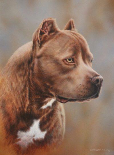 Dog Pet Portrait original painting by Calgary artist Shannon Lawlor