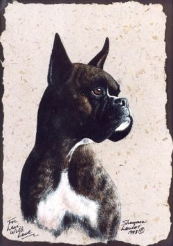 Boxer Dog Pet Portrait Pet Portrait original painting by Calgary artist Shannon Lawlor
