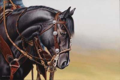 Charro acrylic commission by Calgary Equine Artist Shannon Lawlor