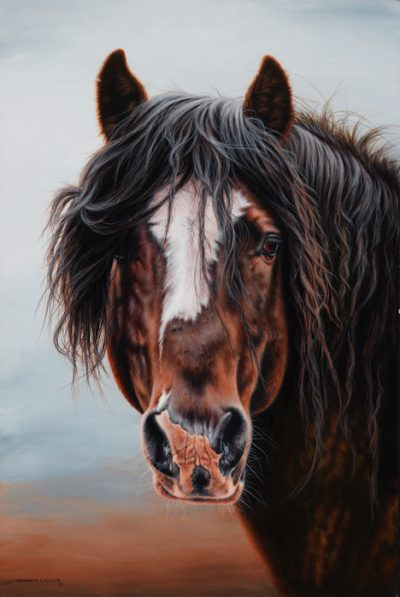 Wild Horse Print by Calgary Equine Artist Shannon Lawlor