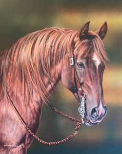 Custom Equine Portrait