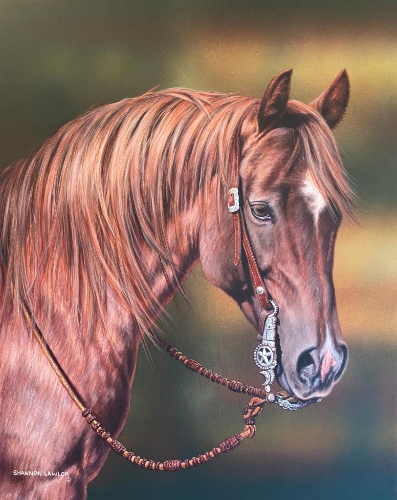 Custom Equine Portrait